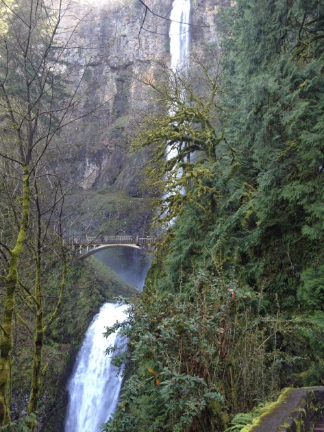 multnomah falls, waterfalls, bridge in front of waterfall, oregon waterfalls